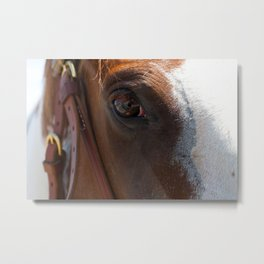 The Eye and the Horse Metal Print