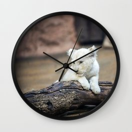 Baby White Lion Cub Taking 5! Wall Clock
