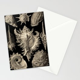 Ernst Haeckel Prosobranchia Sea Shells Stationery Cards