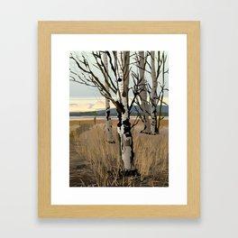 Conboy Wildlife Refuge Framed Art Print