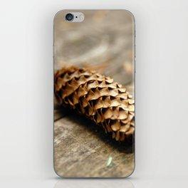 Cone iPhone Skin