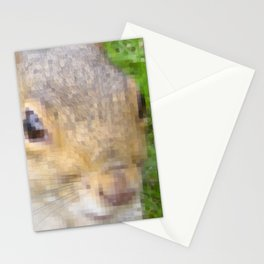 The many faces of Squirrel 2 Stationery Cards