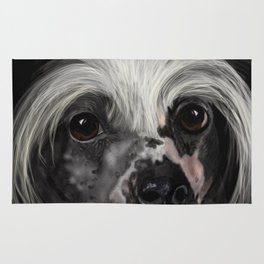 Chinese Crested Up Close Rug