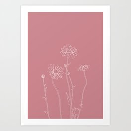 Daisies pink line drawing - Ellie Art Print