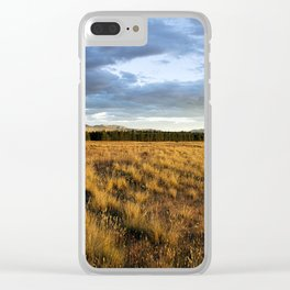 complementary nature Clear iPhone Case