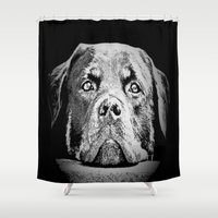 rottweiler Shower Curtains featuring Rottweiler Drawing By Annie Zeno by Annie Zeno