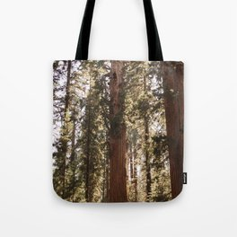 Sequoia National Park XIV Tote Bag