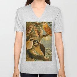 Album de aves amazonicas - Emil August Göldi - 1900 Amazon Animals Exotic Owls Unisex V-Neck