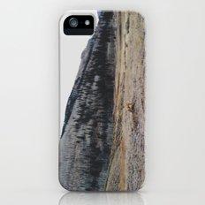 Silverton Fox iPhone (5, 5s) Slim Case