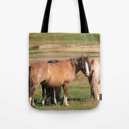 Gypsy_Vanner Horses 0271 - Colorado Tote Bag