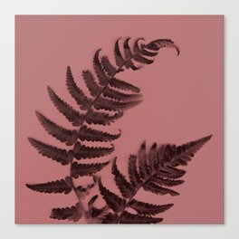 Fern on marsala Canvas Print