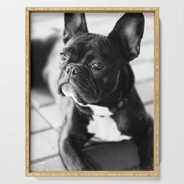 French Bulldog Serving Tray