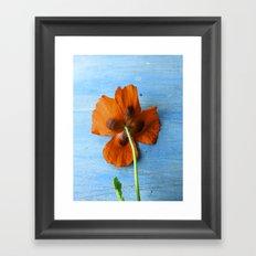 Red Poppy on Blue Framed Art Print
