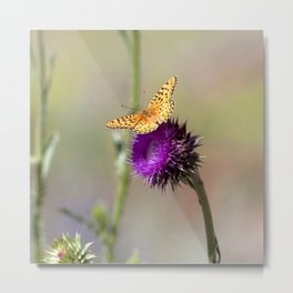 Watercolor Butterfly, Meadow Fritillary Butterfly 01, on Thistle, Beaver Meadows, RMNP, Colorado Metal Print