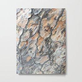platanus skin Metal Print
