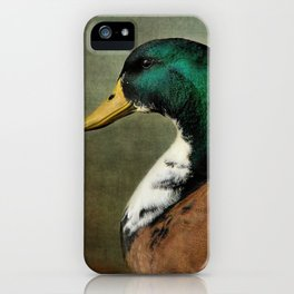 Mallard Duck Portrait iPhone Case
