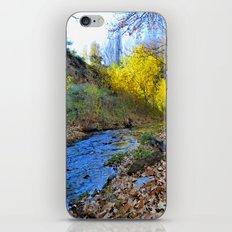 Silver river iPhone & iPod Skin