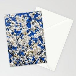 Spring Blossom V Stationery Cards