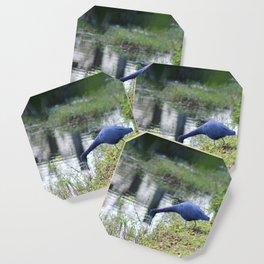 Little Blue Heron Coaster