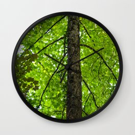 nature arms Wall Clock