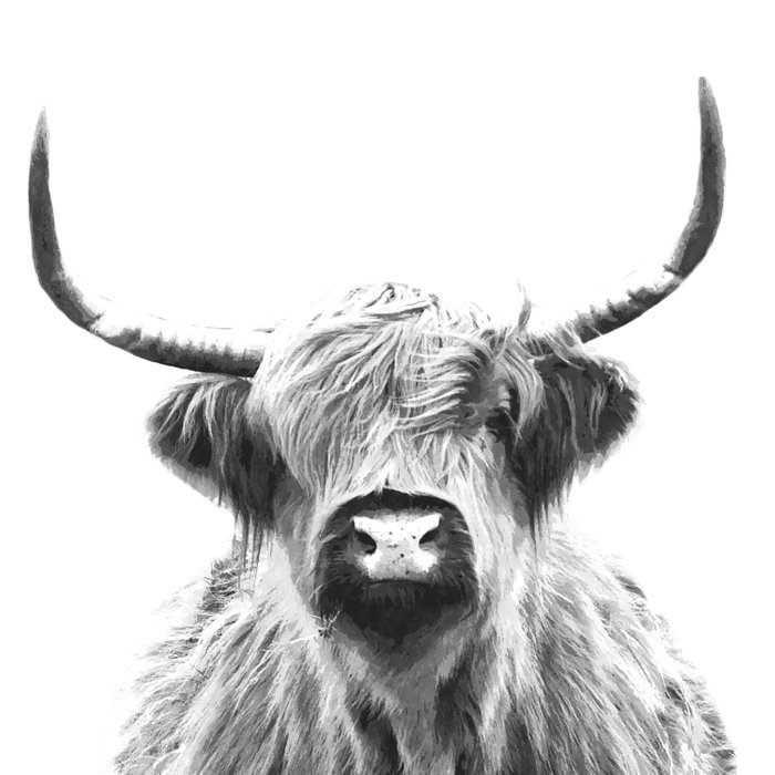 Black and White Highland Cow Portrait Duvet Cover