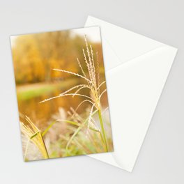 Miscanthus straw ornamental grass Stationery Cards