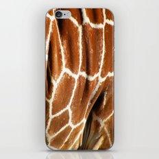 Giraffe Skin Close-up iPhone & iPod Skin