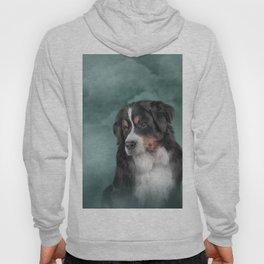 Bernese Mountain Dog Hoody