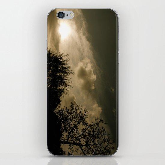 Pastime iPhone & iPod Skin