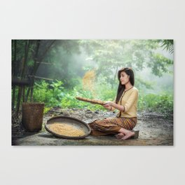 Asian Woman Sowing Rice Canvas Print
