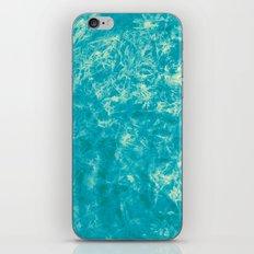 395 iPhone & iPod Skin
