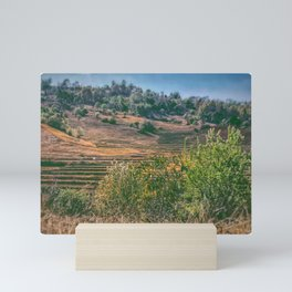 Rice fields Myanmar Mini Art Print