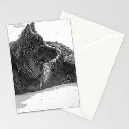 Black Long-Haired German Shepherd Dog 10 Stationery Cards
