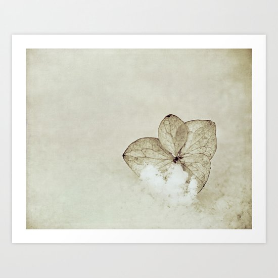 in the cold Art Print