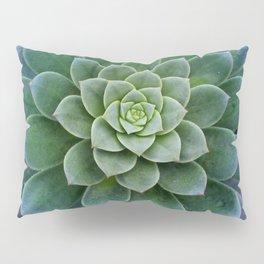 Shades of Succulent Green Pillow Sham