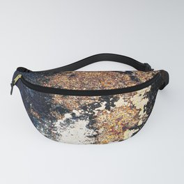 Alien Continents ruined wall texture grunge Fanny Pack