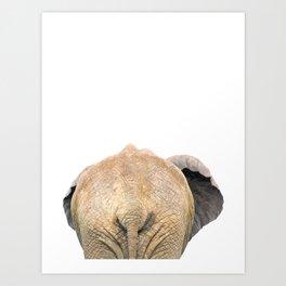 Elephant back Art Print