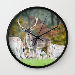 FALLOW DEER WITH SOMETHING TO SAY Wall Clock