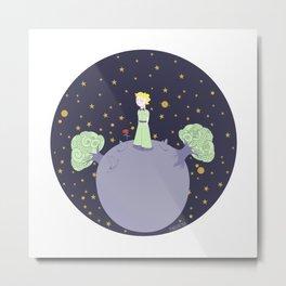 The little prince Metal Print