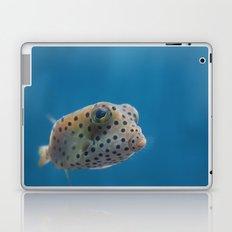Yellow Boxfish Laptop & iPad Skin