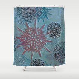 winter dream Shower Curtain