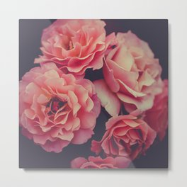 Roses in the night garden Metal Print