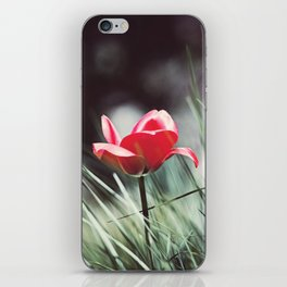 Red Tulip Flower Photography, Floral Green Grass, Red Nature Botanical Art iPhone Skin