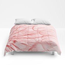 Dandelion In Pink Comforters