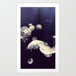 School of Jellyfish Art Print