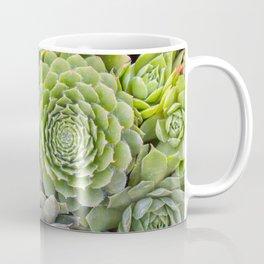 Bountiful Succulents Coffee Mug