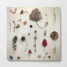 Botanical Party Metal Print