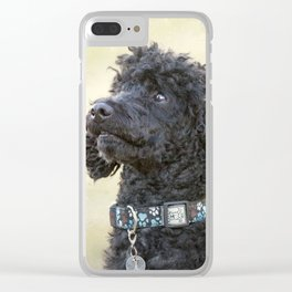 Did You Say Cookie? Clear iPhone Case