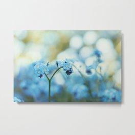 Beautiful Forget Me Not Flower Metal Print