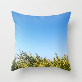 Blue sky copy space square background with coniferous fir tree Throw Pillow
